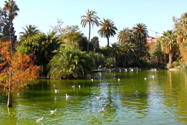 Park Ciutadella Barcelona Lake Fall 1024 × 682