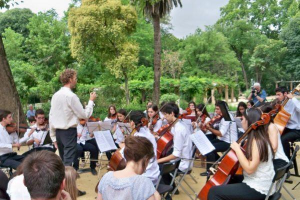 Фестиваль Музыка в парках 2014