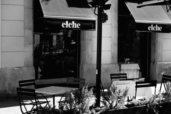 Elche Restaurante X Teddy Iborra Restaurants 9