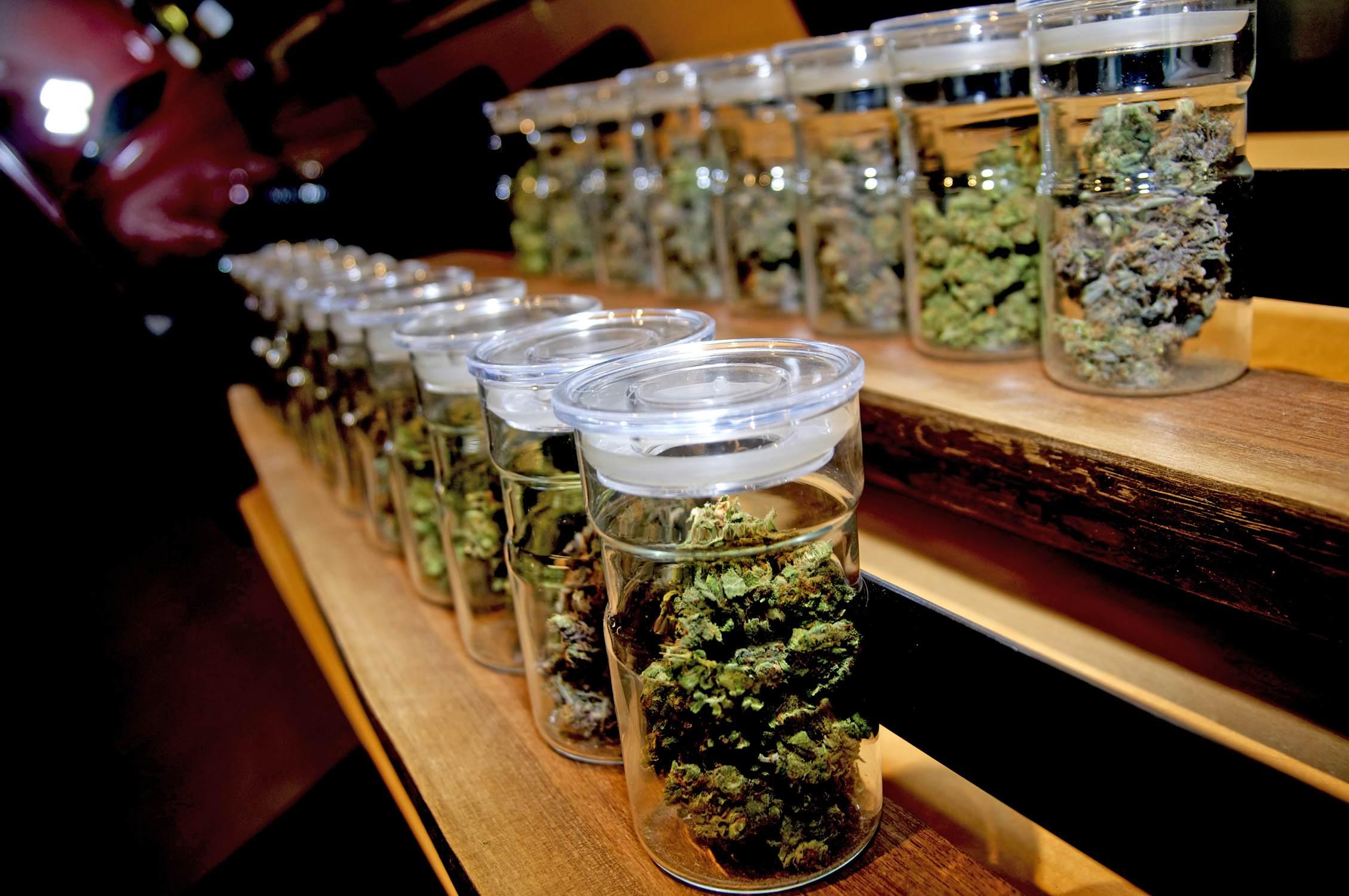 Купить марихуану в барселоне марихуана и другие виды