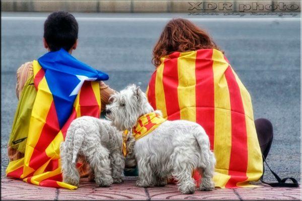 11 сентября — день Каталонии