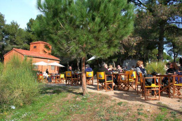 Caseta De Migdia05