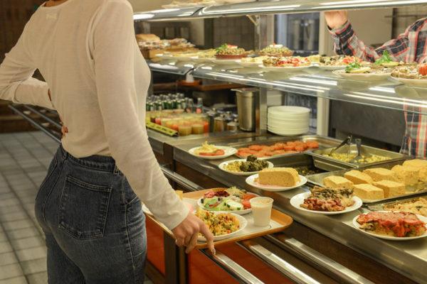 Business plan organic food restaurant
