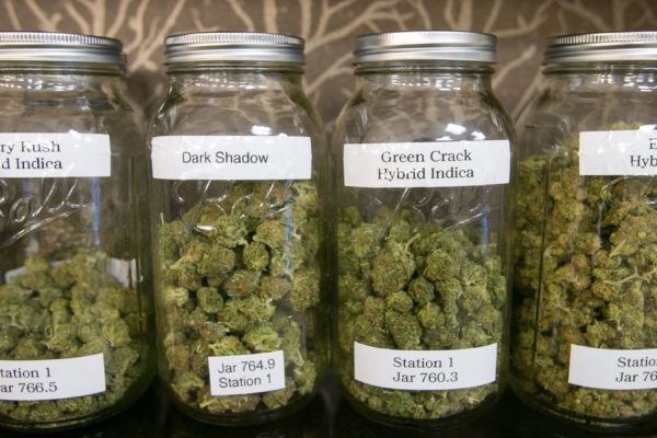 1396672521000 Medical Marijuana