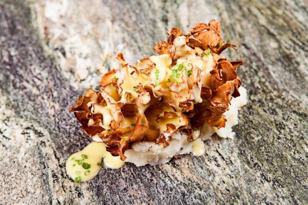 Classic Crispy brown mushroom in Parmentier1