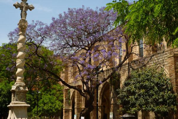 Jardines De Rubio Y Lucas Raval Barcelona