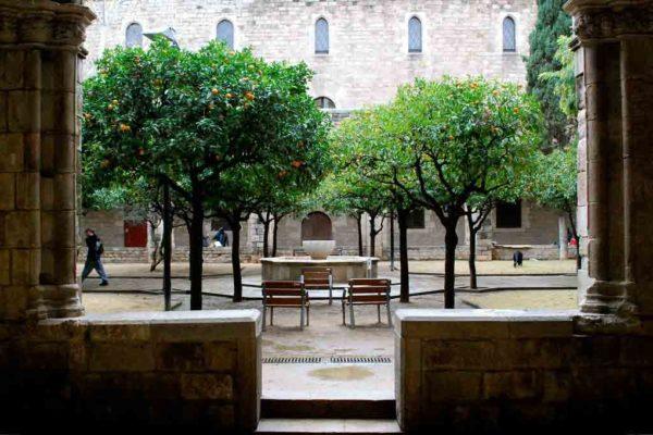 Live Catalonia Barcelona Literary Library 1