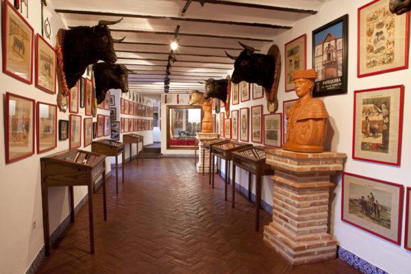 Museo Taurino Antequera2
