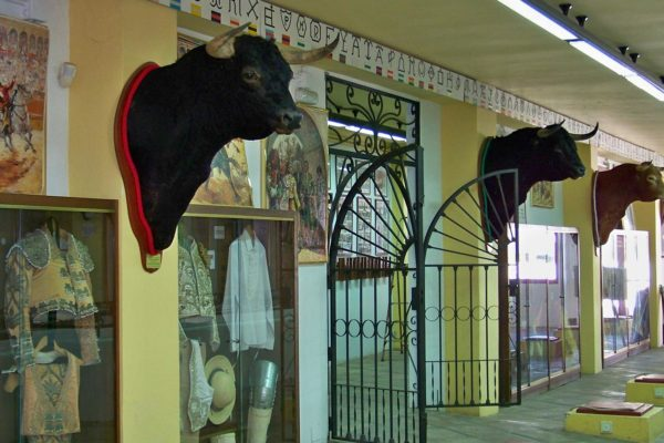Museo Taurino Estepona2