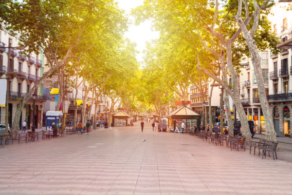 La Rambla Street In The Early Morning Barcelona Spain  590361305
