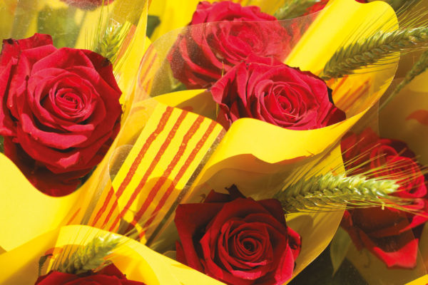 San Jordi in Barcelona